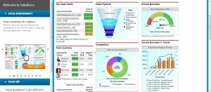 01 CRM Test Drive- Team summary dashboard (1)