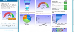 08 CRM Test Drive - Sales Report Dashboard
